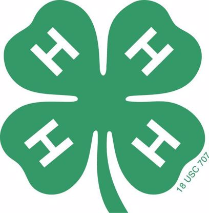Picture of Douglas County 4-H Cloverbud Fees