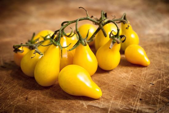Picture of Cherry Tomato-Yellow Pear