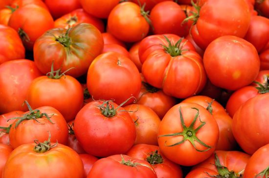 Picture of Heirloom Tomato-Brandywine Red